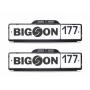 Комплект из 2-х видеокамер Bigson iCam-2000