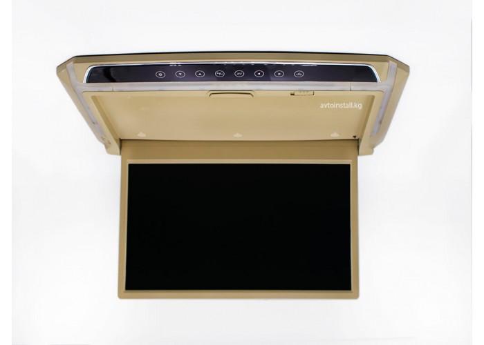 Монитор потолочный ViewTech 14 бежевый с MP5