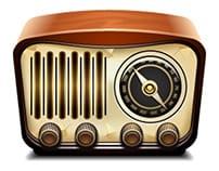 Устройство оснащается цифровым радио модулем TDA 7786